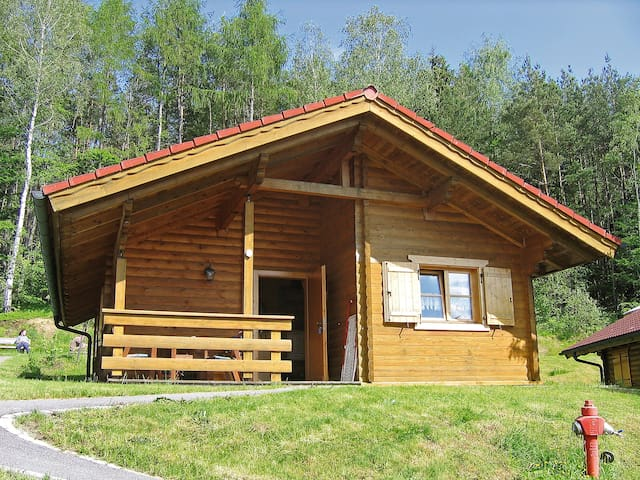 3-room house Naturerlebnisdorf Stamsried for 5 persons - Stamsried - House