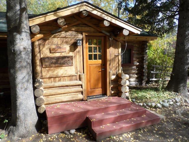 Great Wyoming Cabin - Restored - Wilson - Dům