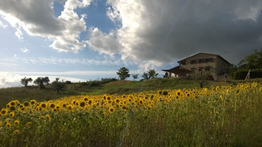 Umbrian Lodge with stunning view! - Lugnano In Teverina - Daire