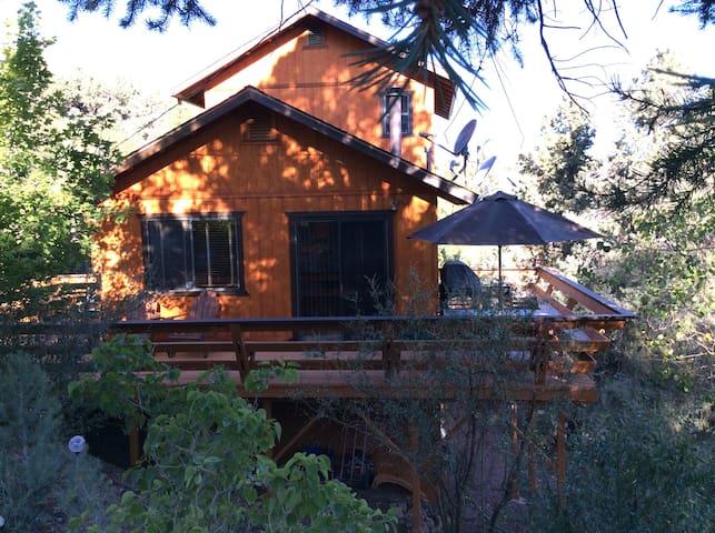 Modern Mountain Cabin--Sunshine! - Pine Mountain Club - Casa