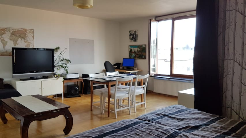 Central and fresh 46m2 apartment with a view - Stockholm - Appartement