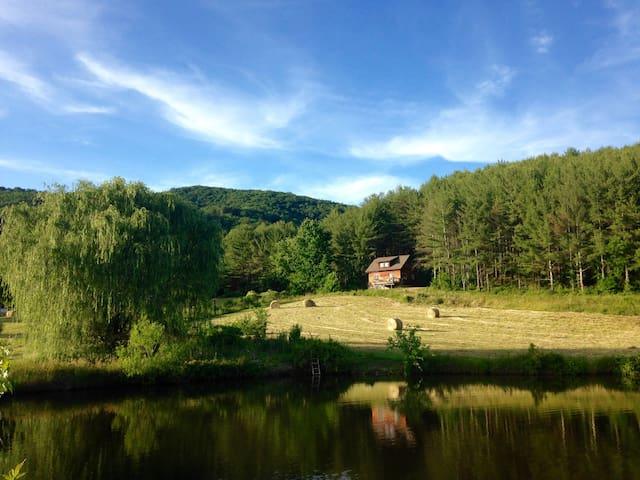 Broadwing Farm ~Poplar Cabin/Mineral Water Hot Tub - Hot Springs - Cabaña