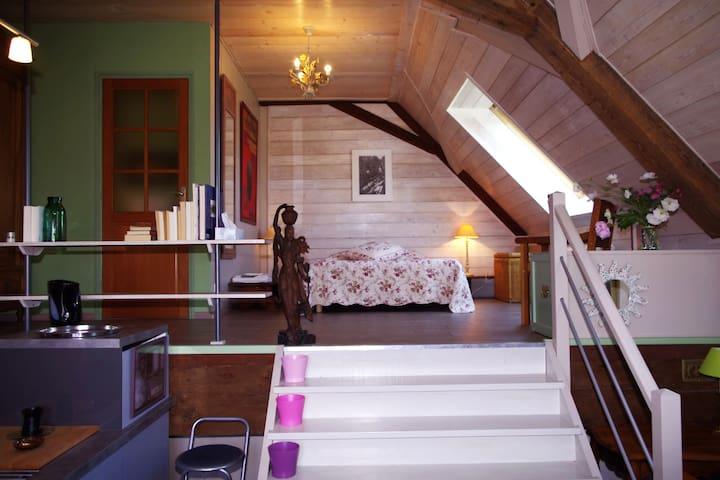 La Maison de Martine- Studio - Desingy - Apartemen