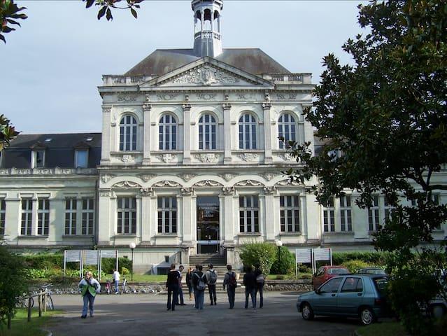 Studio cosy quartier UCO + WIFI - Angers - Lägenhet