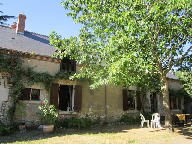 L'orée de Chambord - Saint-Laurent-Nouan - Hus
