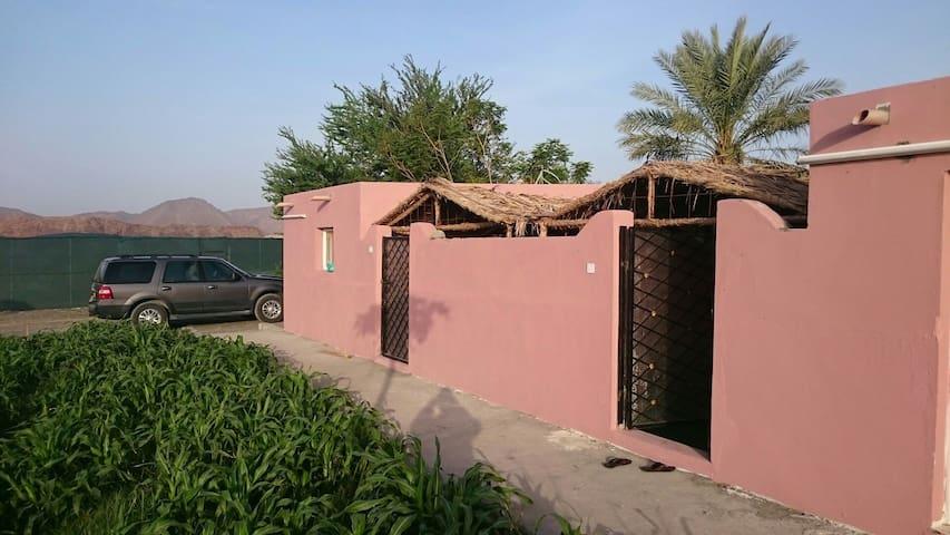 Yonis hony farm2 - alkhadra