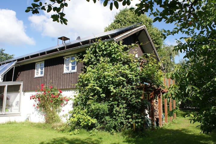 FeWo AN DER MÜHLE - Struckum - Apartamento
