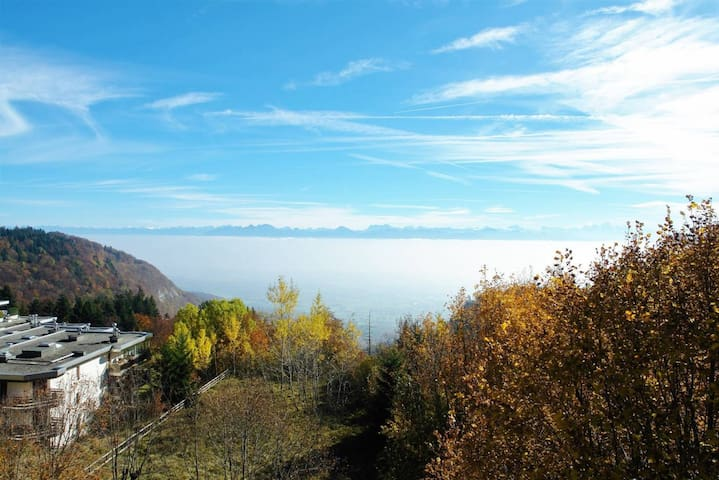 Apartment with balcony and lake view -GVA in 35min - Saint-Cergue - 公寓