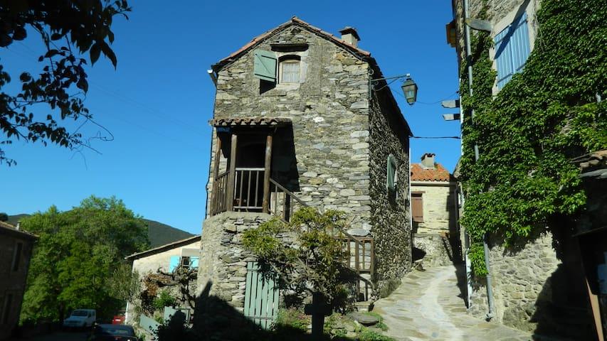 Charmante maison de campagne proche Roquebrun - Vieussan - Rumah liburan