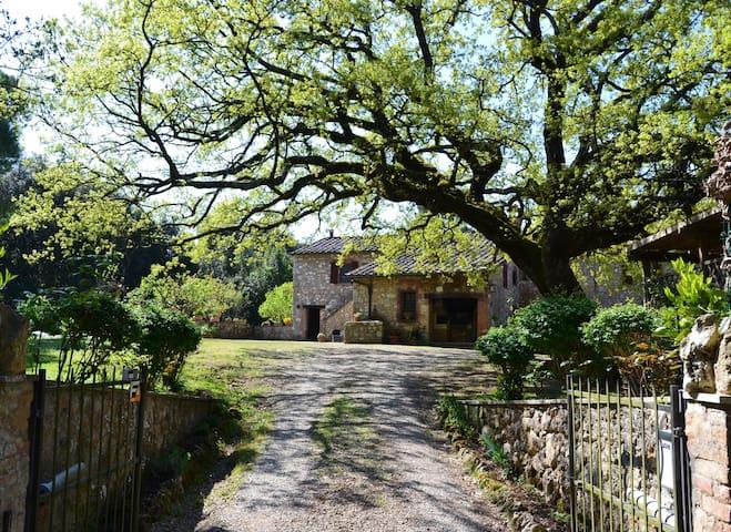 Typical Tuscany Farmhouse - Sovicille - Villa
