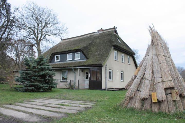 Ferienzimmer Soul - Hiddensee - Hiddensee - Leilighet