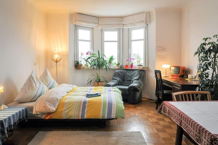 Gemütlich in einer Villa :) 25 qm - Heilbronn - Lägenhet