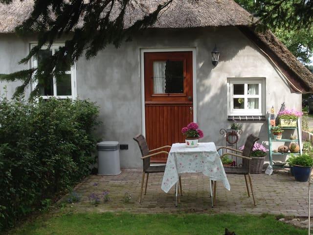 vakantiehuisje aan de IJssel - 's-Heerenbroek - Hus