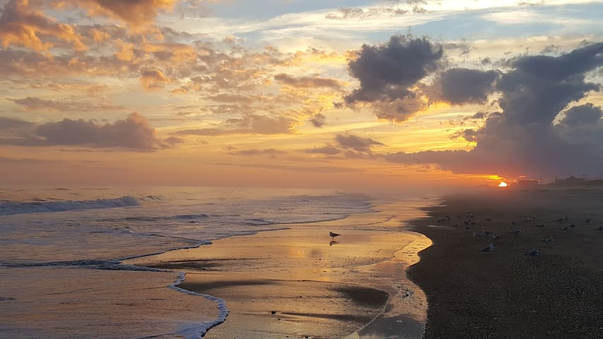 Best Beach In the US! Come experience Paradise! - North Topsail Beach - Huis