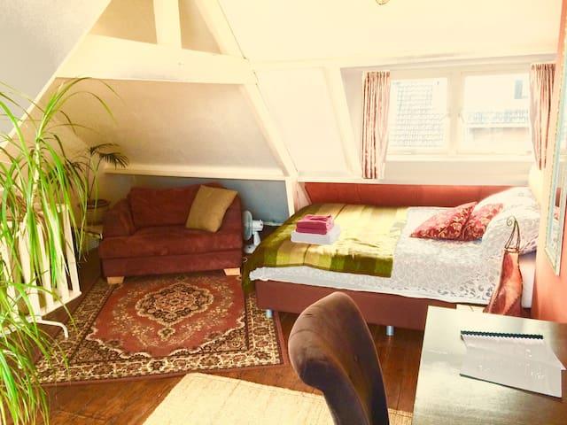 Oriental attick with flowery balcon - Utrecht - Radhus