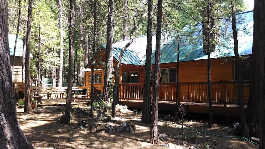 Cedar Cottage Retreat, Wawona CA - Wawona