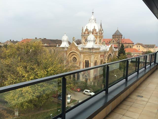 Penthouse Park - Timișoara - Çatı Katı