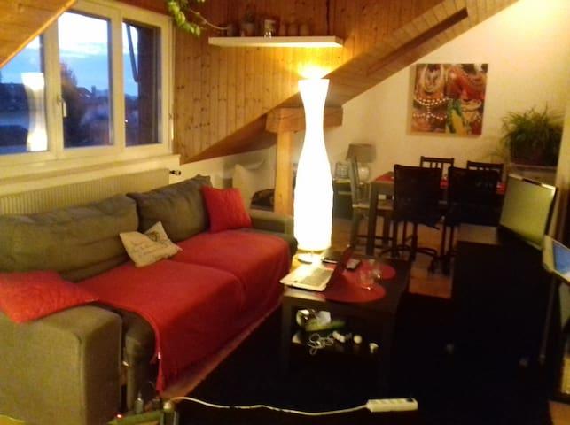 Apartment under the roof - Crissier - Leilighet