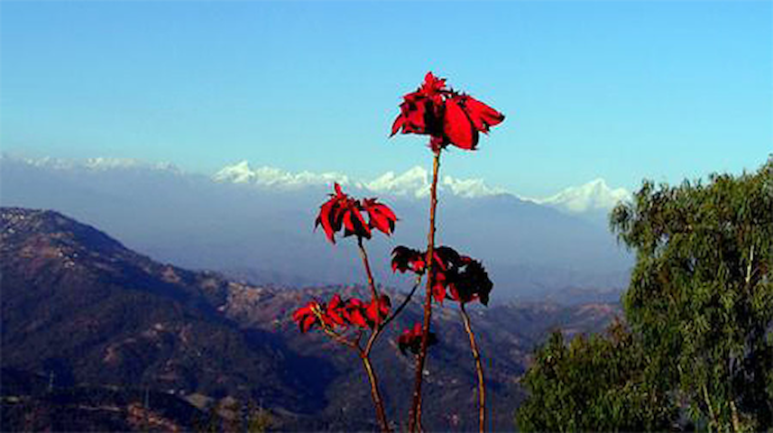 Snow View Mountain Resort - Dhulikhel - 家庭式旅館