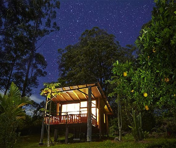 Rainforest eco chalet & breakfast. - Wadeville - Alpstuga