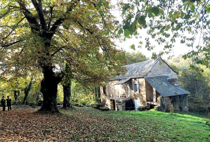 Maison dans les bois  (Ledergues 12170) - Naussac - Casa-Terra
