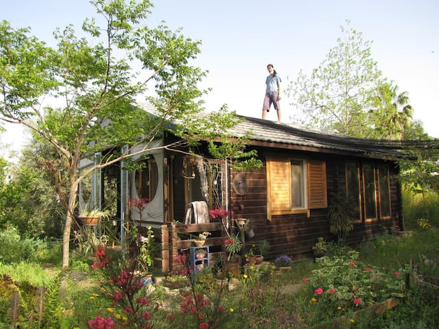 Cute wooden house for rent  - Kfar Sirkin