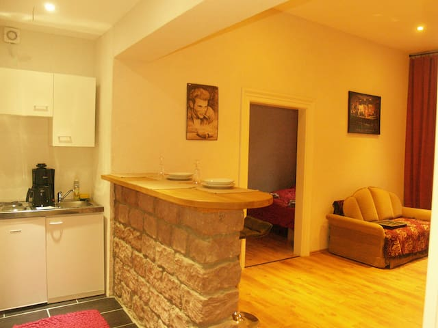 Schönes und helles zwei Zimmer Altstadtappartment - Kaiserslautern - Leilighet