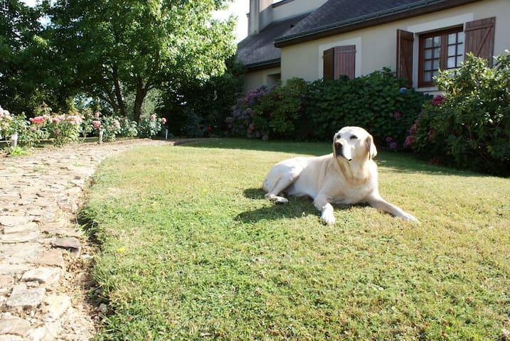 Maison au calme avec grand jardin - Châteauneuf-sur-Sarthe - Casa