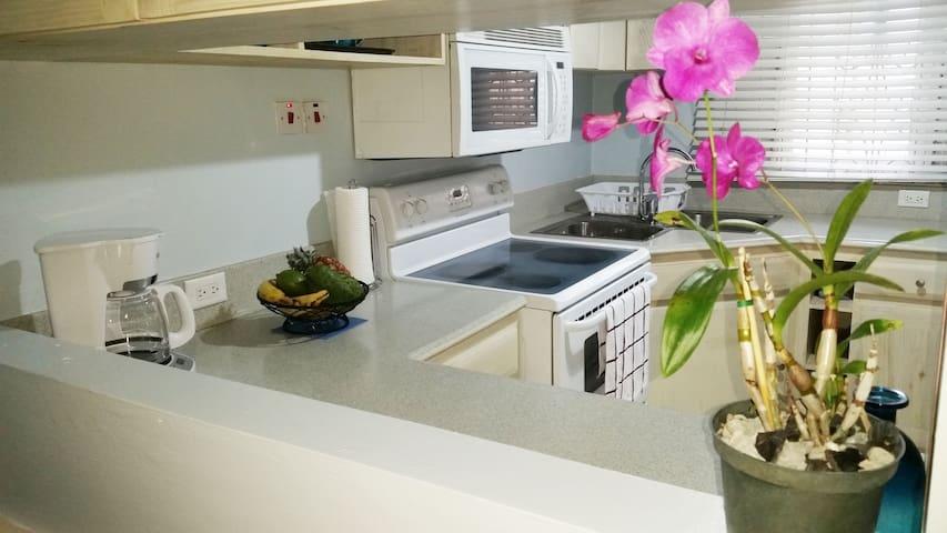 Villa Marlin - Close to All Major Attractions - Montego Bay - Vila