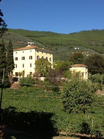 VILLA with  private SWIMMING Pool - Pisa Vicopisano - Villa