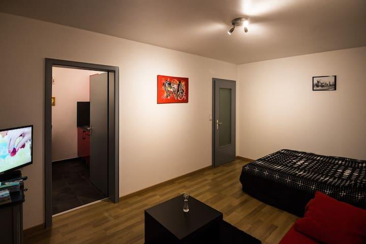 Nice flat,stone's throw from Basel - Saint-Louis