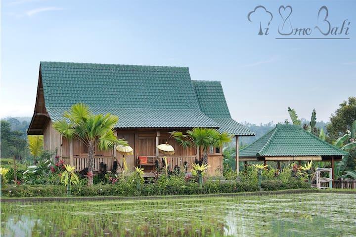 Heritage Rice Field Villas - Ti Amo Bali - Penebel