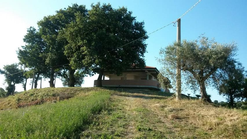 Rooms like a B&B surrounded by nature. - Mosciano Sant'Angelo - Bed & Breakfast