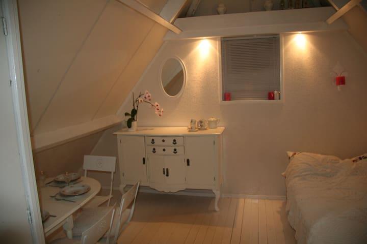 explore the  north: relaxing studio - Kollumerzwaag - Lägenhet