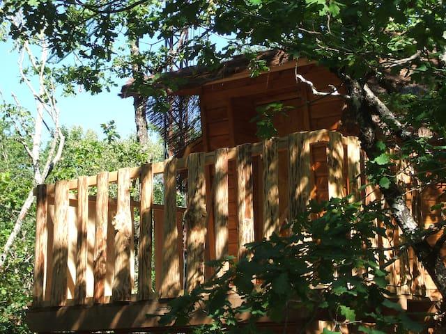 Cabanes dans les arbres - Camps-Saint-Mathurin-Léobazel - Trädhus