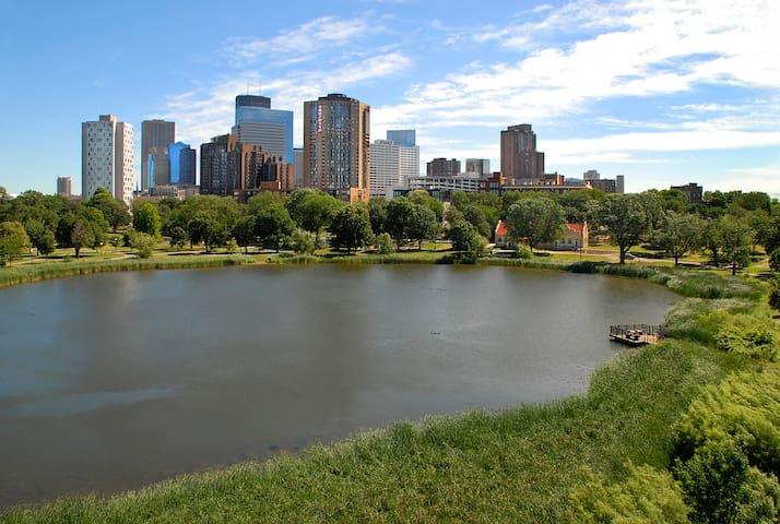 Beautiful Surprise! Downtown/Cnv Ctr - Minneapolis - Villa