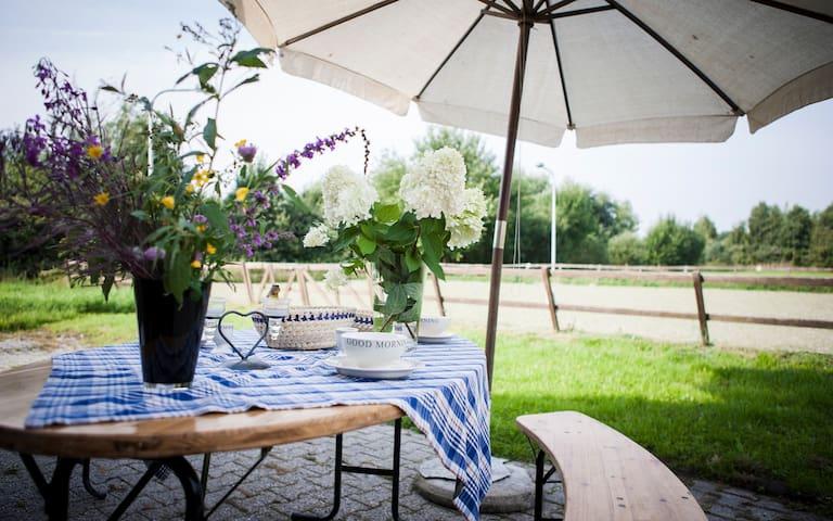 """Gastenverblijf """"de Meerboom'' - Hollandscheveld - Bed & Breakfast"""