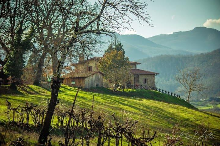 Poggio di Dante zona Camaldoli - Poppi - Villa