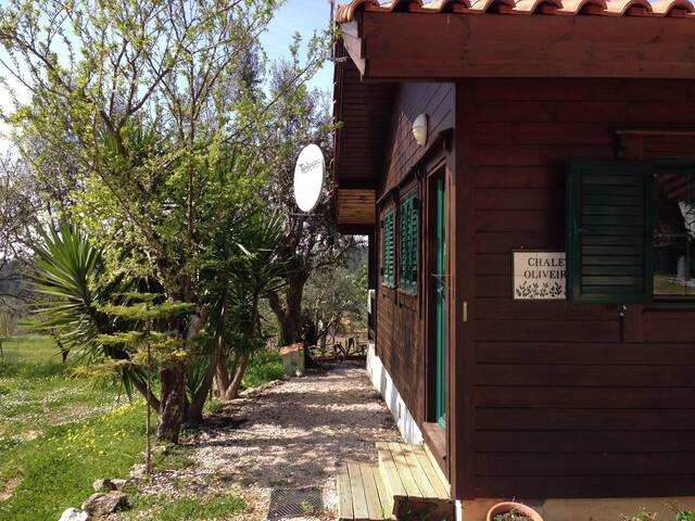 Chalet Oliveira ( max 5 persons)  inc Wifi & DVD - Tomar - 牧人小屋