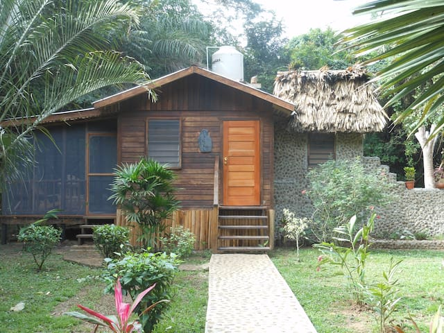 Yoga Retreat Exotic Riverfront Jungle Setting - Santa Elena - Bungalow