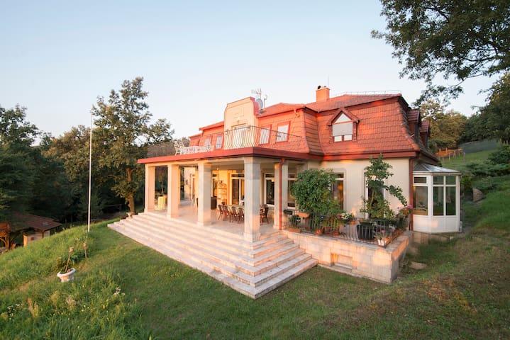 Classic house 50km from Budapest - Nagymaros - Dom