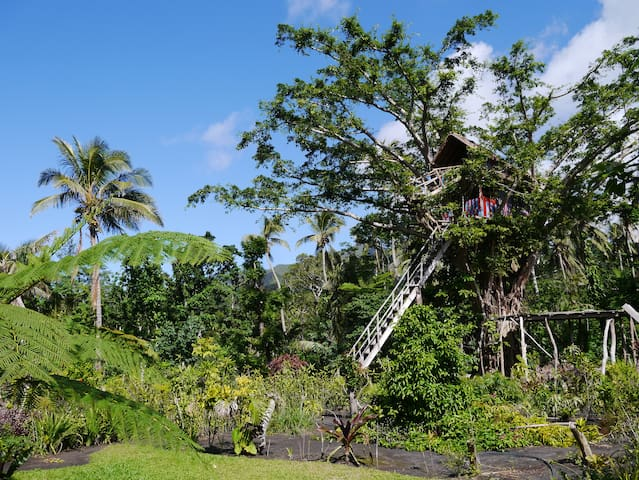TREE TOP HOUSE at volcano's entrance - Yasur Lodge - Lowanatom - Boomhut