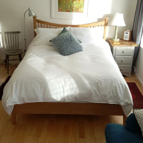 Spacious comfortable Kingsize room, TV & parking - Totnes - Ev