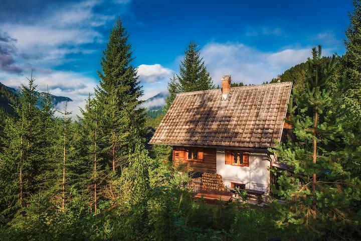Romantic Cabin in beautiful Alps - Zgornje Jezersko