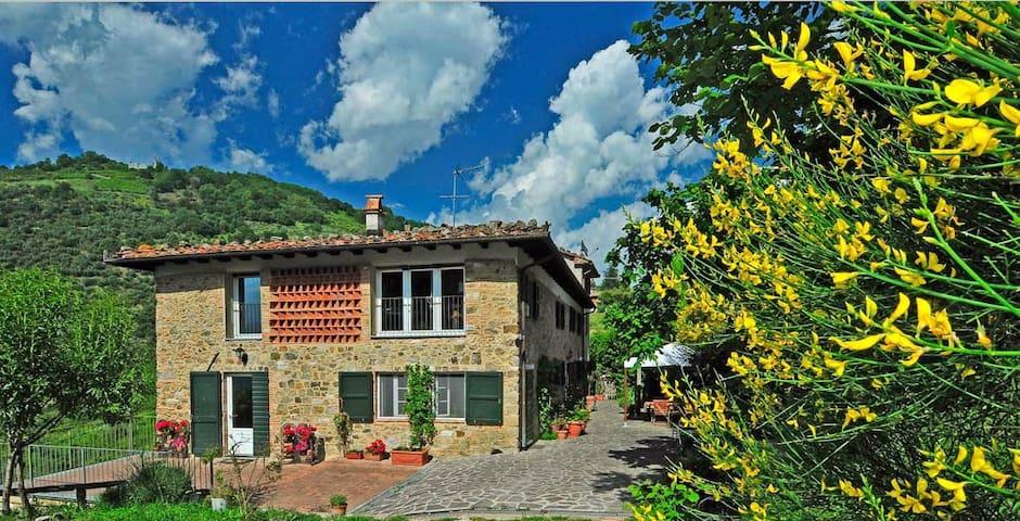 """Eco-Friendly Farmhouse """"Abbacca-là"""" - Lucca - Apartamento"""
