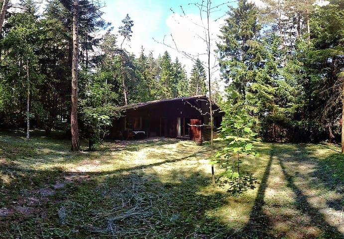Gemütliche Blockhütte mit Kaminofen - Emmingen-Liptingen