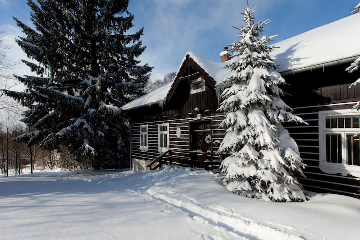 Cosy Mountain Cottage in Jizera mountains - Desná - Chalet