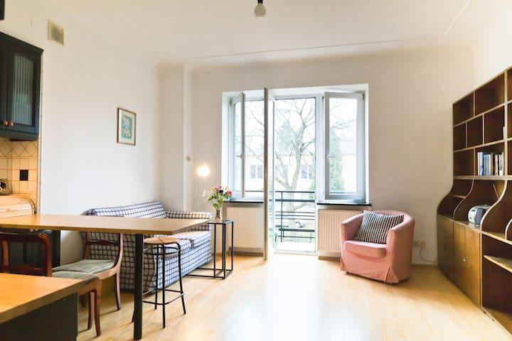 Gorgeous, sunny apartment. Gorgeous, trendy area. - Varsovie - Appartement