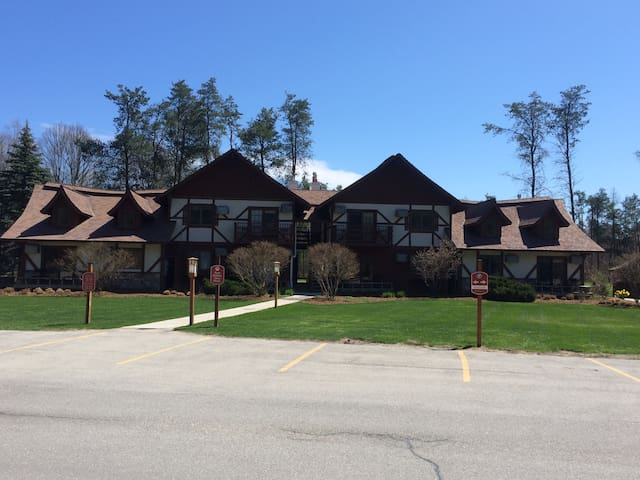 Main Level Condo, Close to Crystal Mtn Amenities - Thompsonville