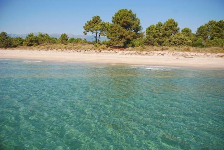 Bungalow à la mer - Ghisonaccia